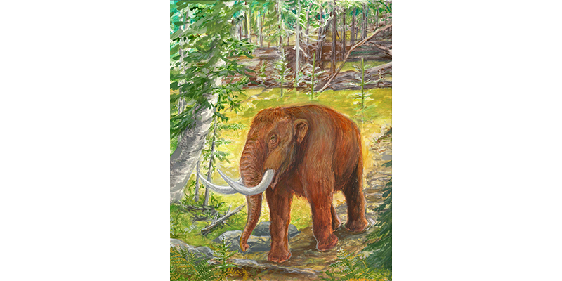 Ice Age Forest with American Mastadon